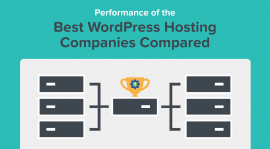 What Should I Expect From WordPress Hosting As a Non-Developer?