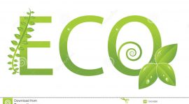 Be Eco-Responsible and Protect the Environment