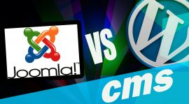 WordPress, Joomla or Drupal – Which CMS Is Right For You?