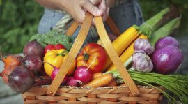 Five Common Myths About Organic Food