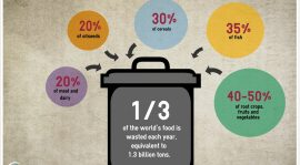 Facts That Will Change the Way You Approach Food Wastage in India